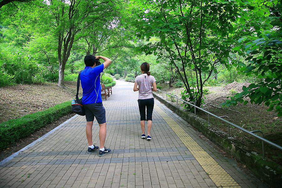 산책로에서 사진을 찍는 사람들