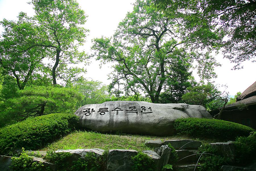 광릉수목원