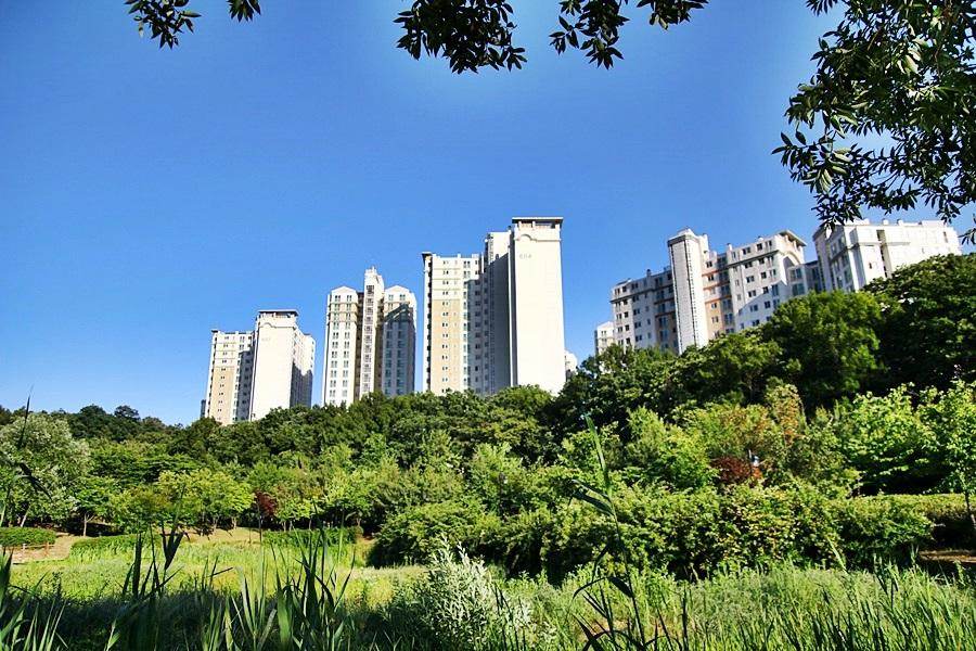 아파트숲과 수풀의 조화