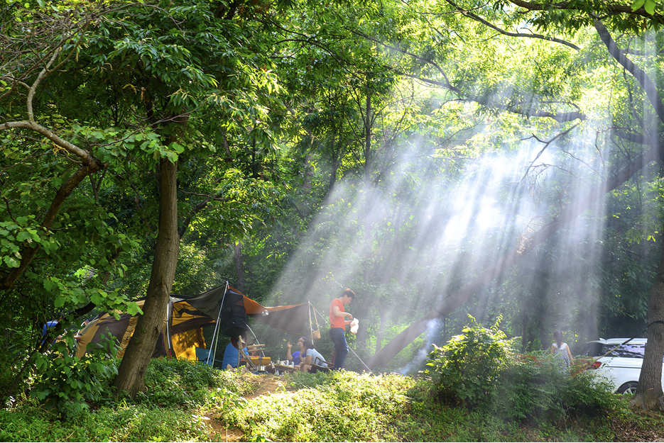 빛이 들어오는 캠핑장