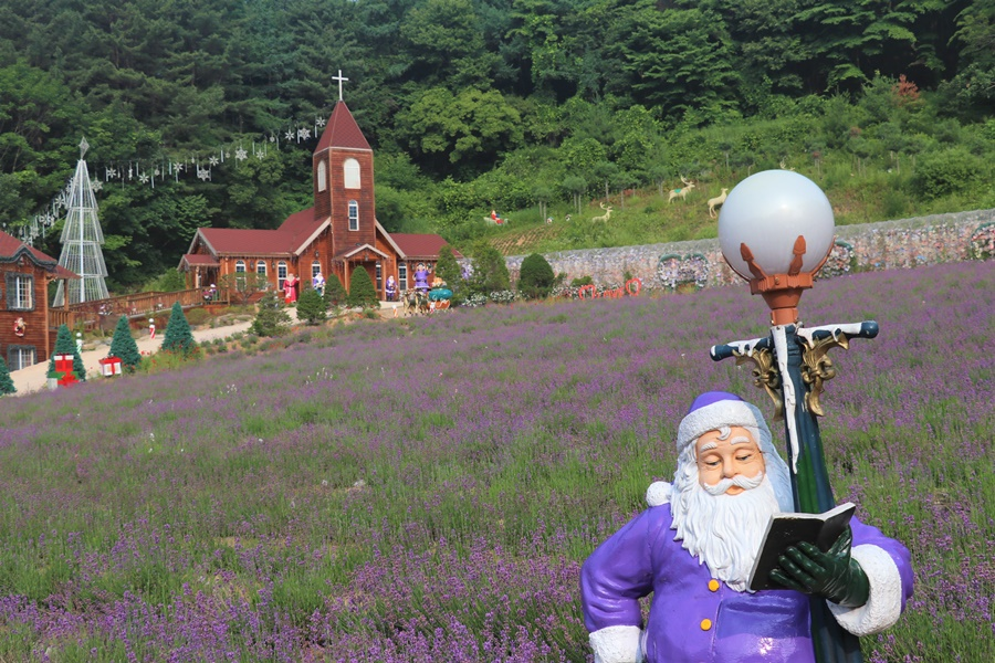 산타 동상과 허브 꽃밭