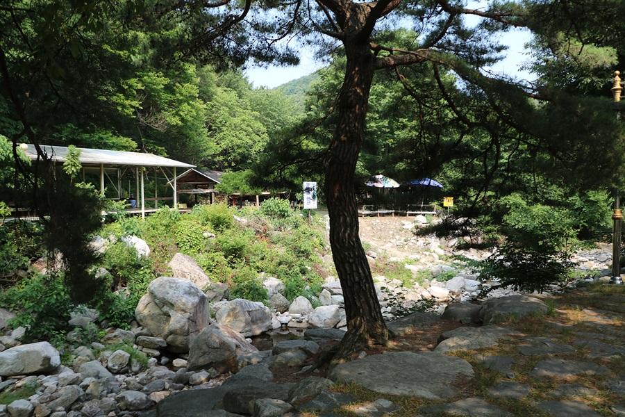 계곡입구 식당