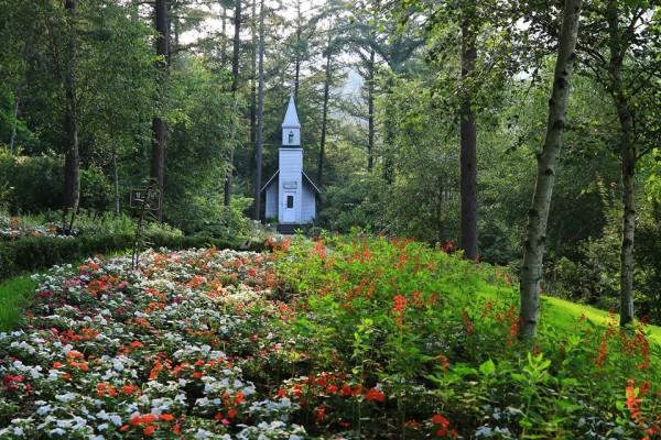 경기도 가평 여행 아침고요수목원의 여름도 아름다워라