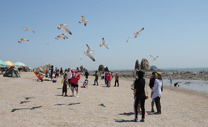 화성_제부도에서 즐거운 시간을 보내는 관광객들