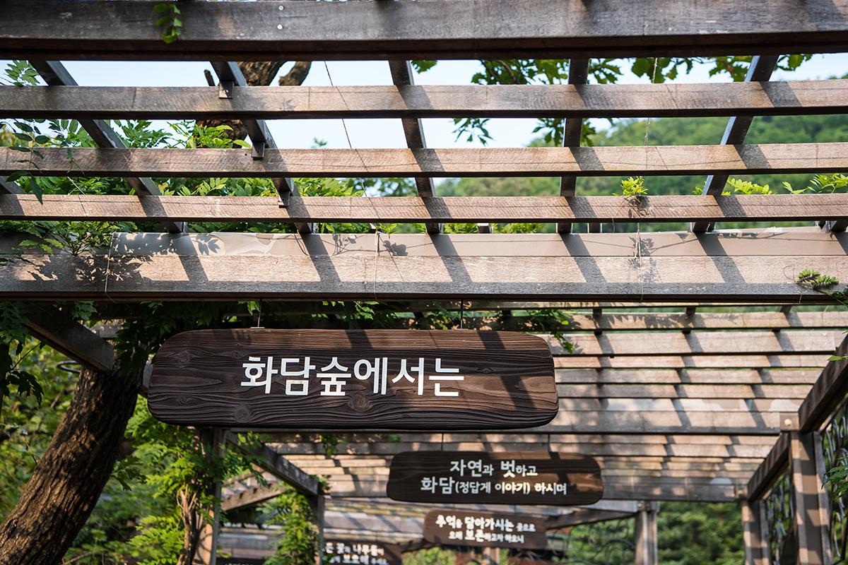 09 화담숲