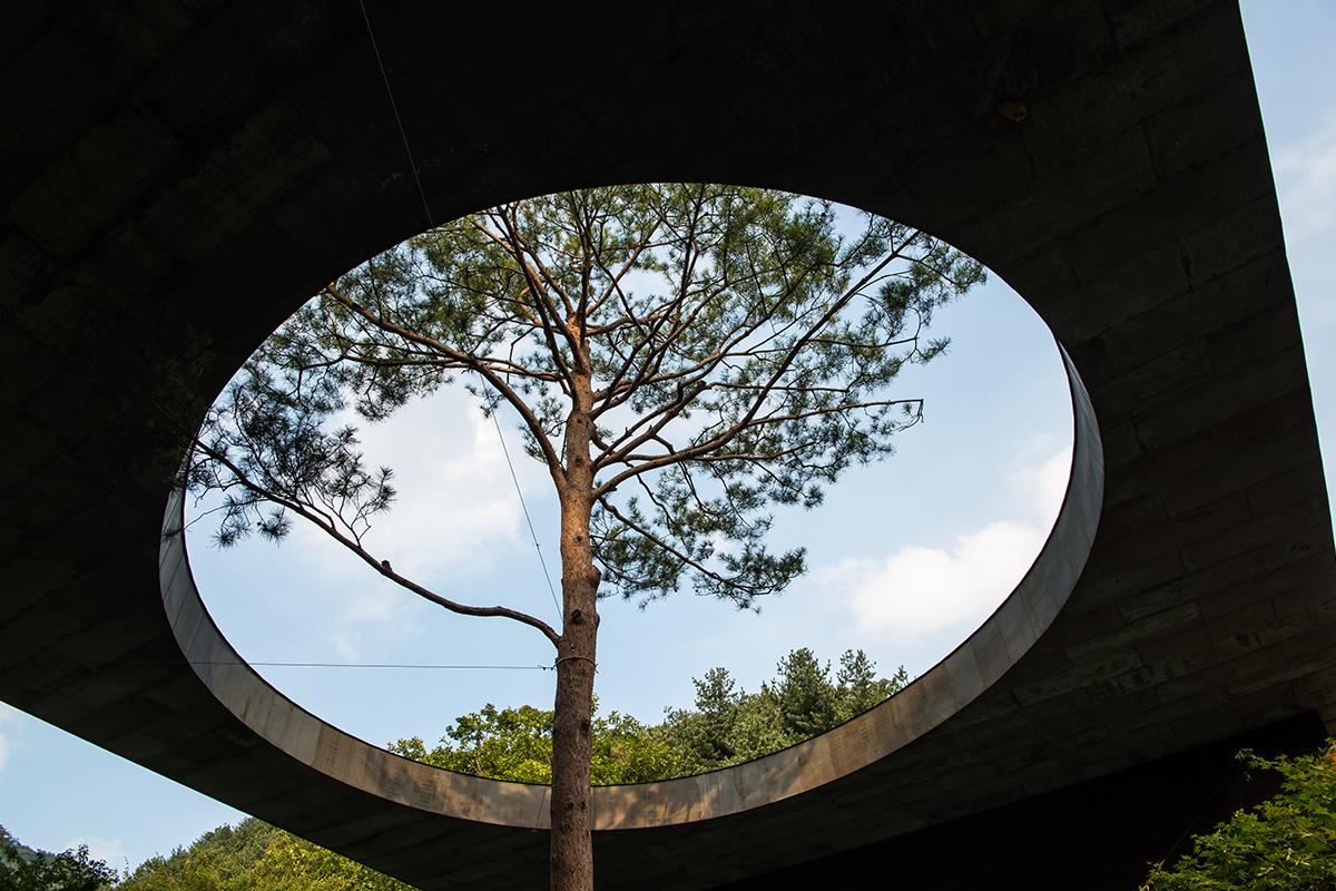 11 화담숲