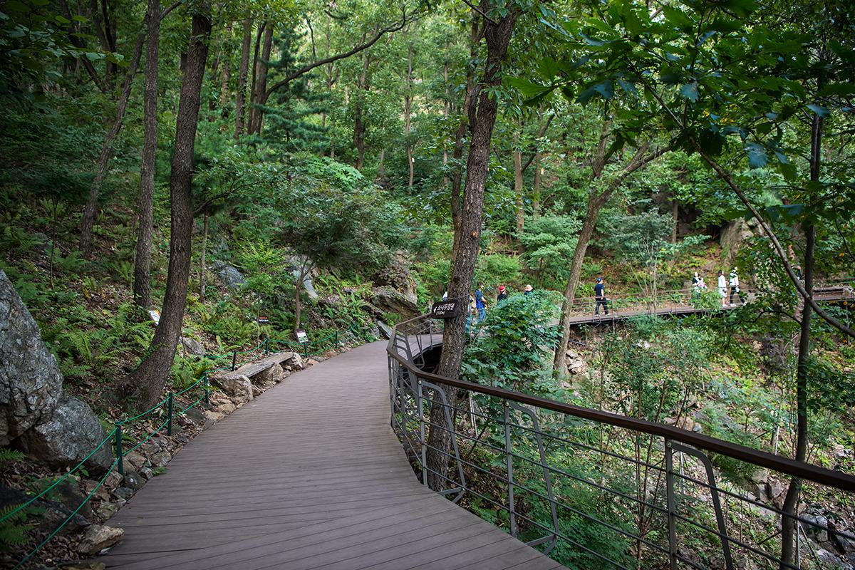 16 화담숲