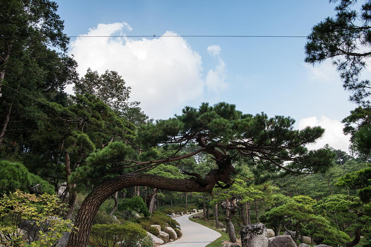 20 화담숲
