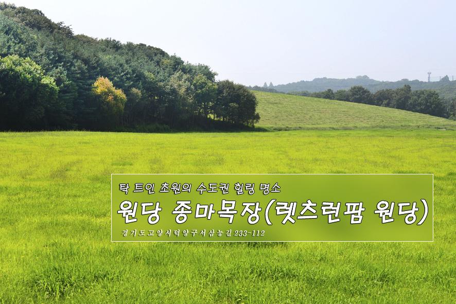 2017.9.8.원당 종마목장(렛츠런팜 원당)