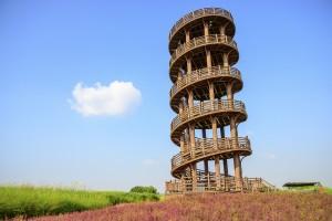 9월여행지추천,시흥갯골축제가 열리는 시흥갯골생태공원