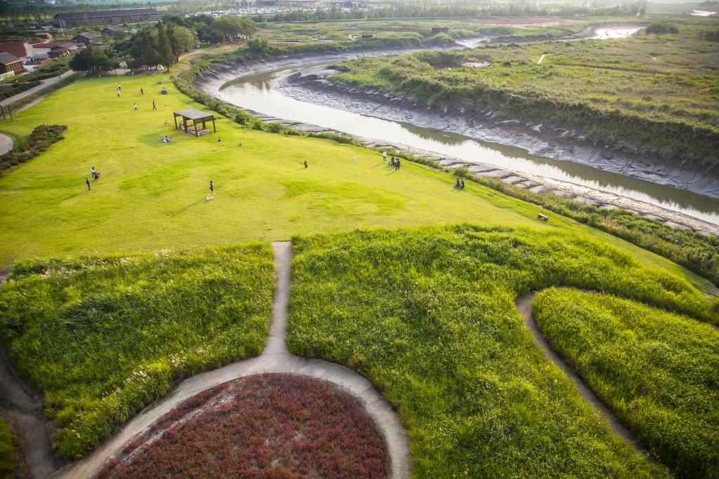 흔들전망대에서 바라본 갯골생태공원 전경