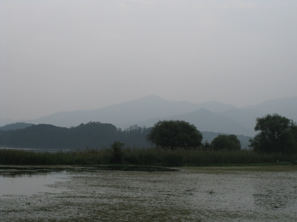 두메향기,구둔역,두물머리,김치말이 224
