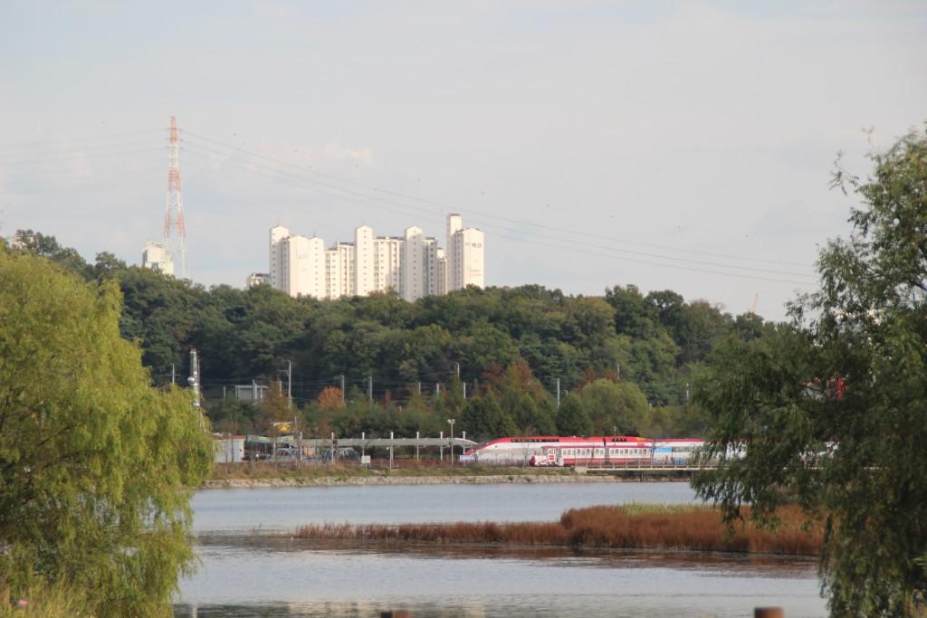 의왕조류,철도,레일바이크,용인,관악 318