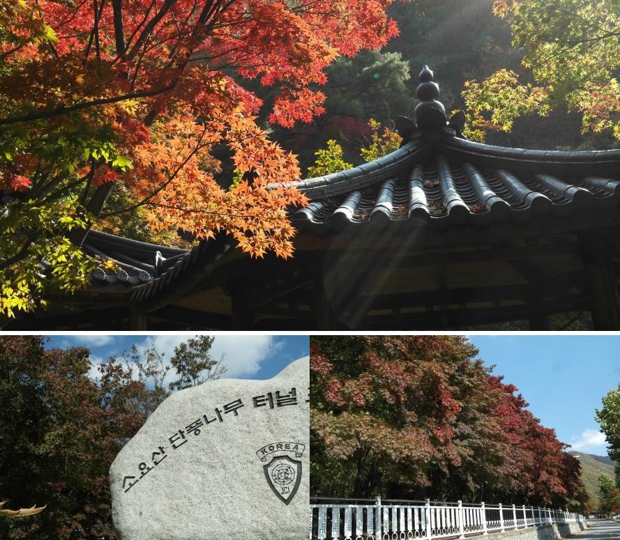 2017-10-27 16;29;14_0