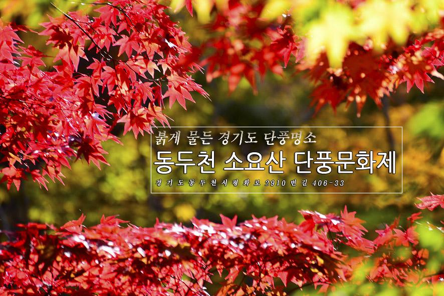2017.10.24.동두천 소요산 단풍문화제
