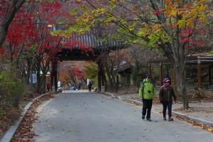 12월 #2. 초겨울 산행에서 원효를 만나다 '소요산 '
