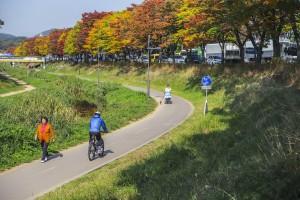 11월 #5. 화정천과 안산천을 잇는 '안산 페달로 자전거길'