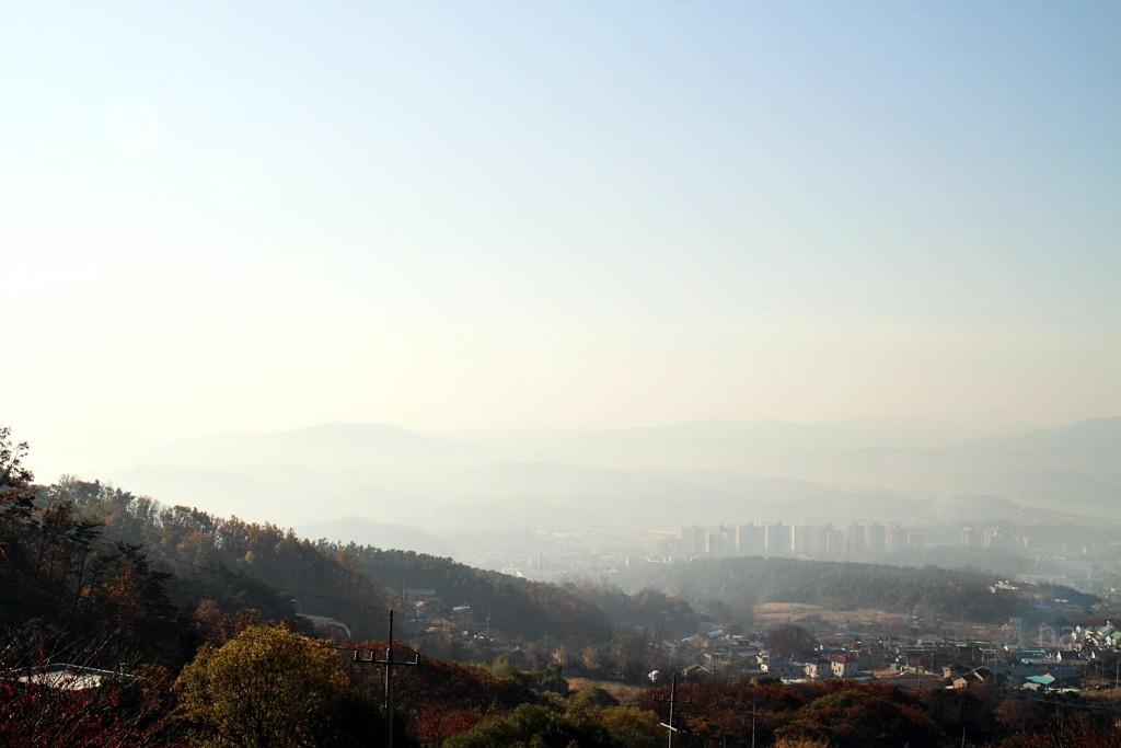 용문산자연휴양림 (105)