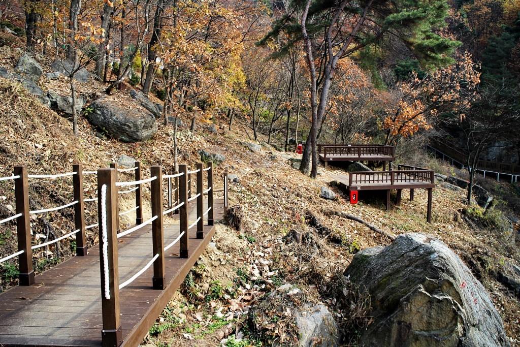용문산자연휴양림 (125)