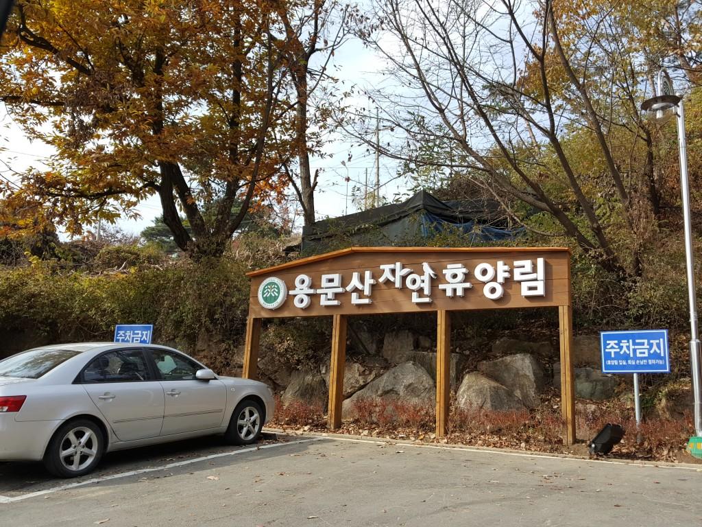 용문산자연휴양림 (88)