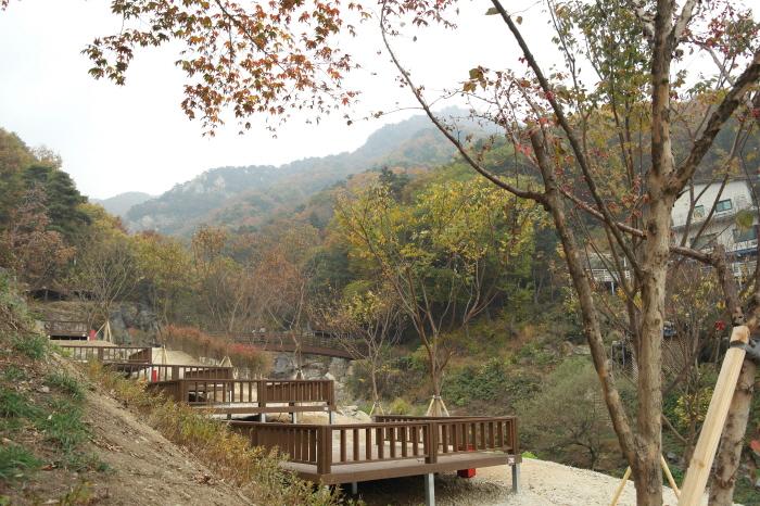 양평 용문산자연휴양림