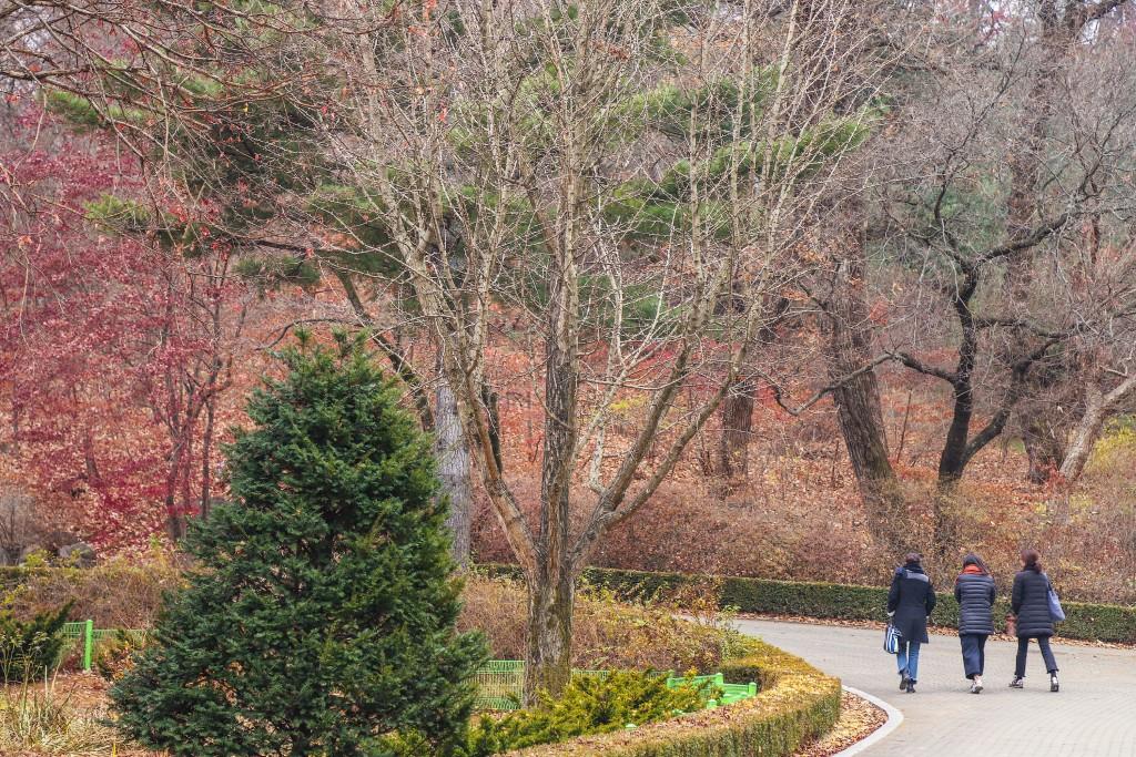포천 국립수목원 트레킹 모습