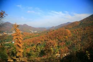 양평 산나물두메향기,가을풍경따라 걷는 길