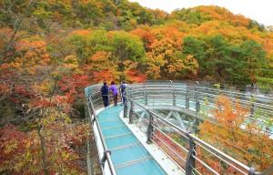 [가을여행주간]오색단풍으로 곱게 물들은 연천 재인폭포