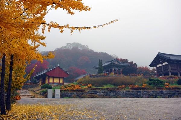 가을 여행주간 안성 가볼만한곳 – 안성 칠장사