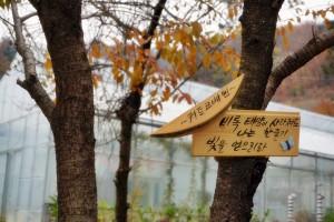 양평 힐링여행 하기 좋은 송백수목원 & 오르다온