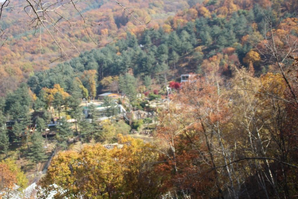 d양평레일바이크,남한산성,오르다온,구둔역,두메향기 034