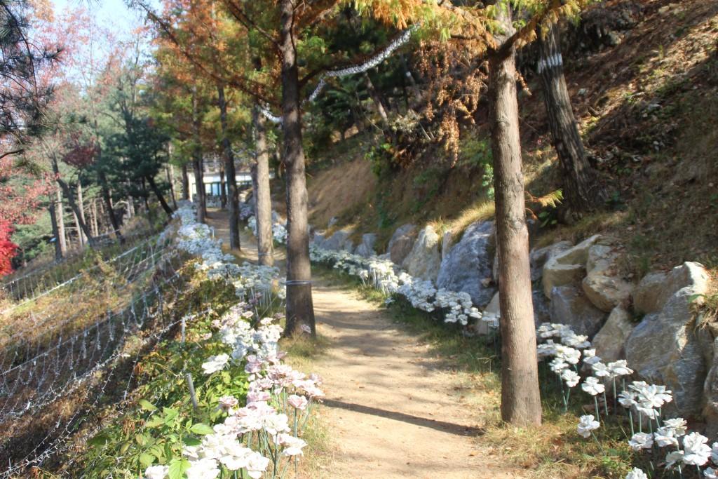 d양평레일바이크,남한산성,오르다온,구둔역,두메향기 040