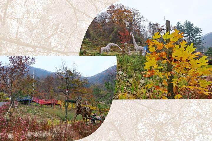 송백수목원 산책로