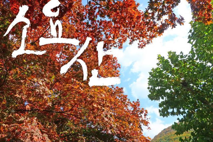 소요산 가을 단풍