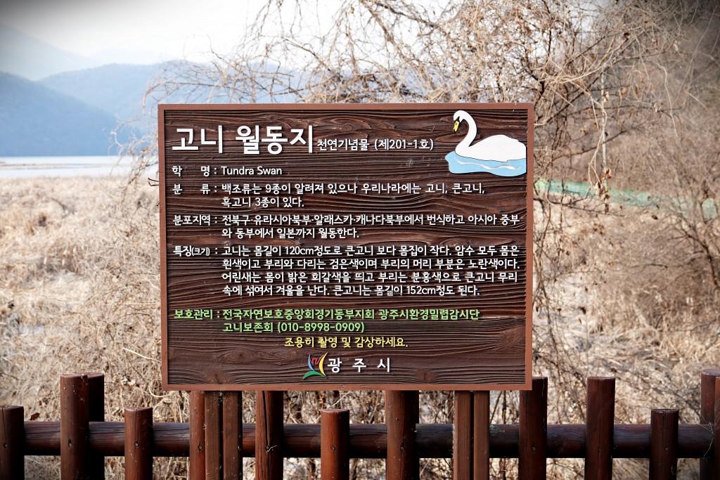 경안천습지공원 (4)