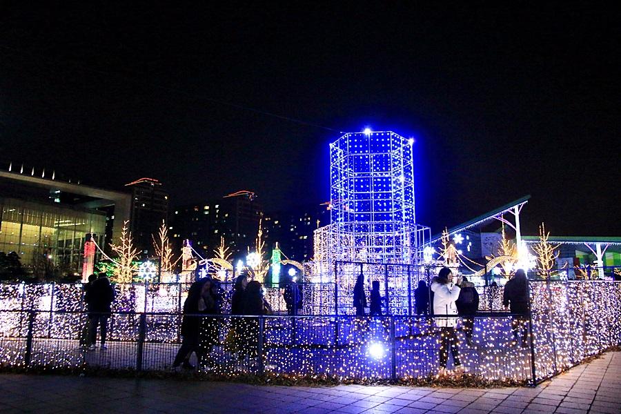 빛축제 야경