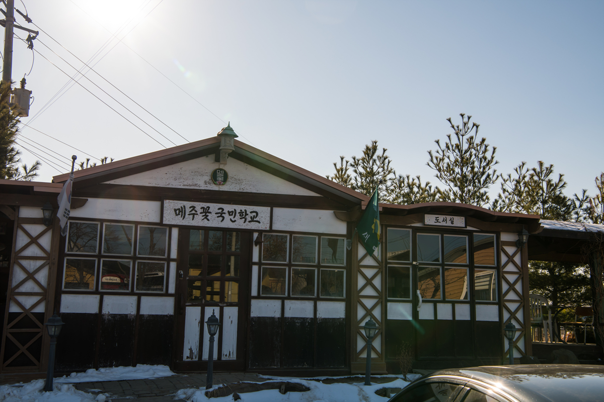 메주꽃 국민학교