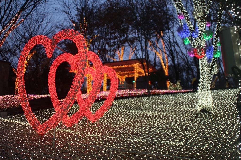 c청연통장,안산별빛축제 154
