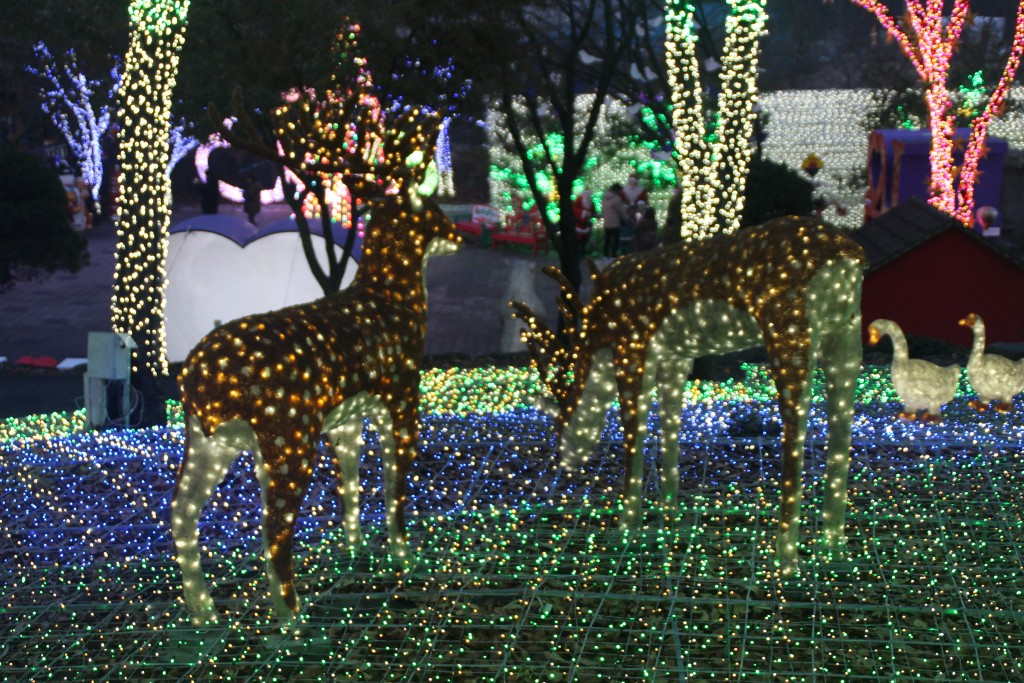 c청연통장,안산별빛축제 157