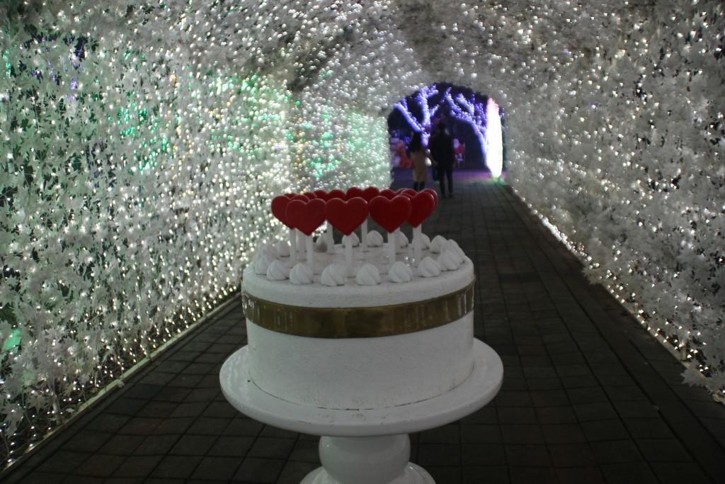 c청연통장,안산별빛축제 216