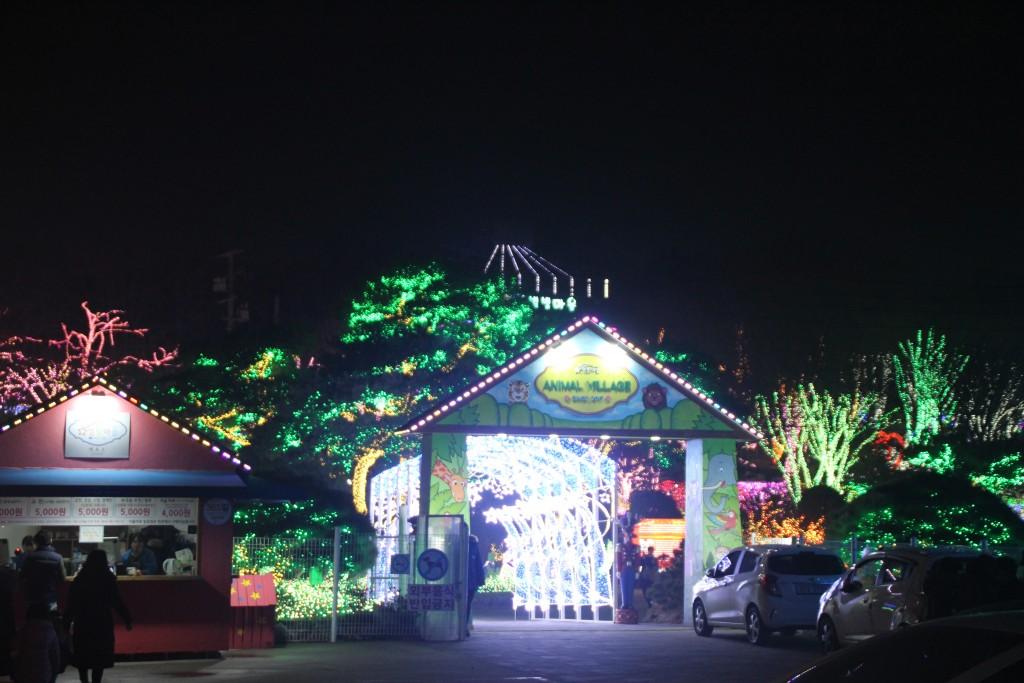 c청연통장,안산별빛축제 299