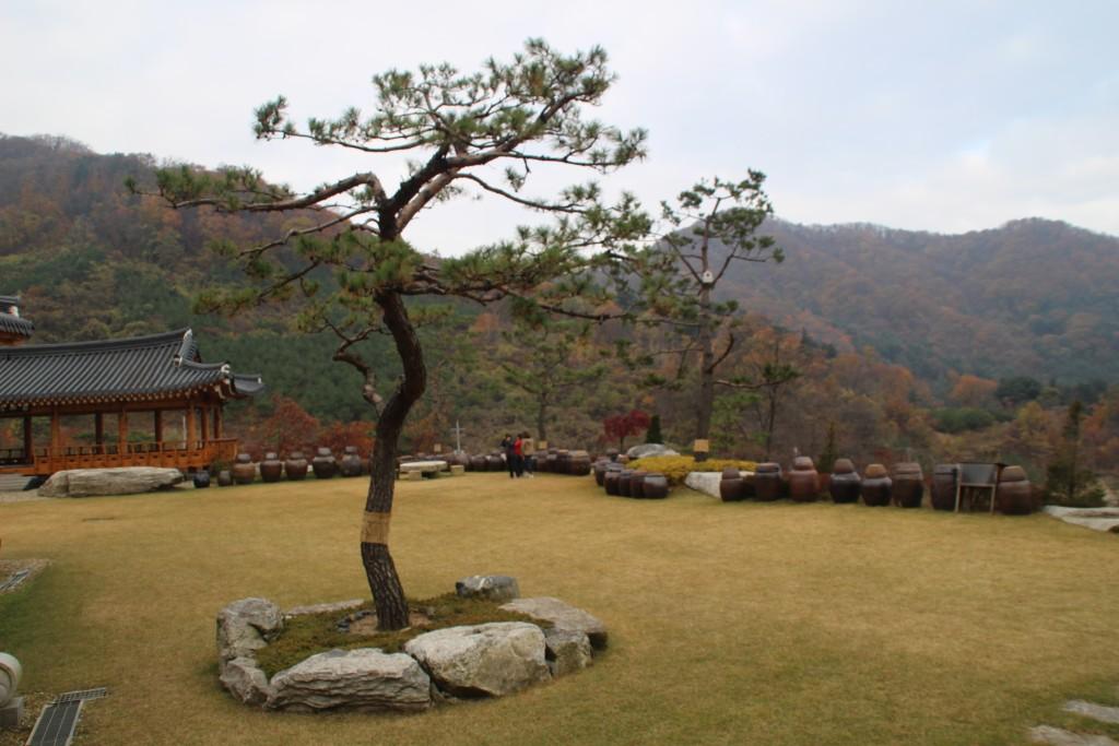d양평레일바이크,남한산성,오르다온,구둔역,두메향기 019