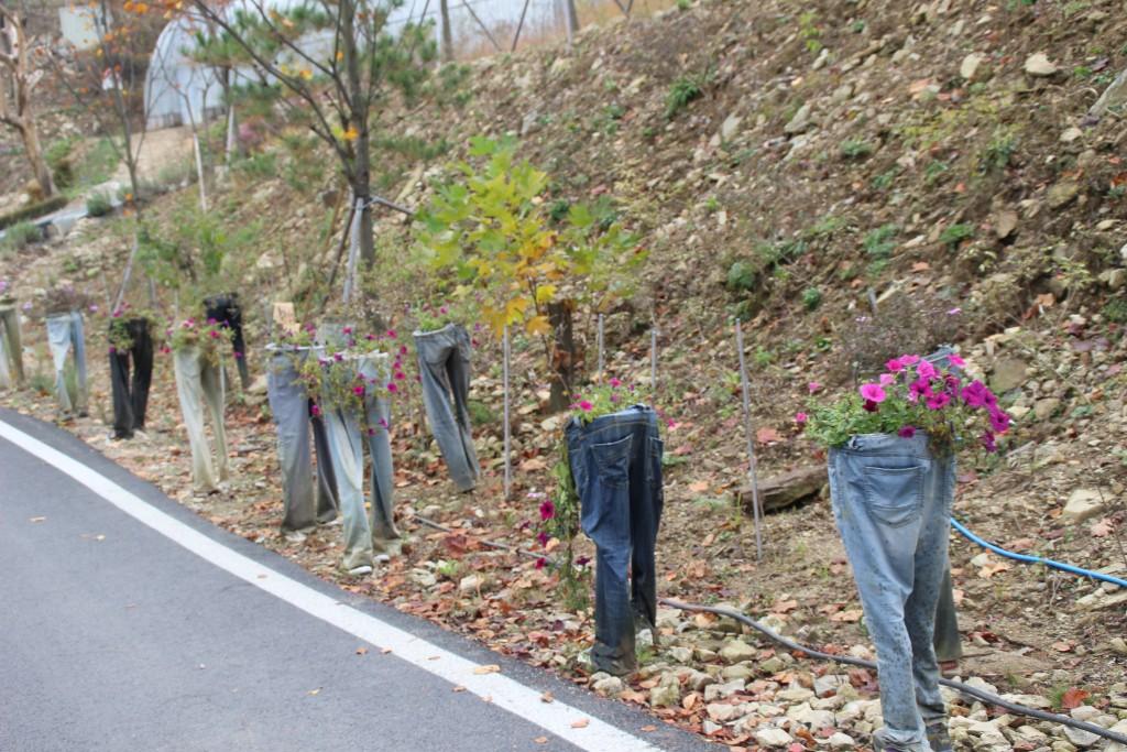 d양평레일바이크,남한산성,오르다온,구둔역,두메향기 046
