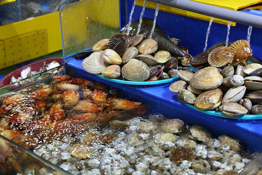 조개찜 해산물 사진