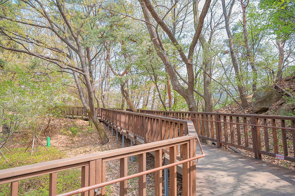 경기도 유원지 안양예술공원 13