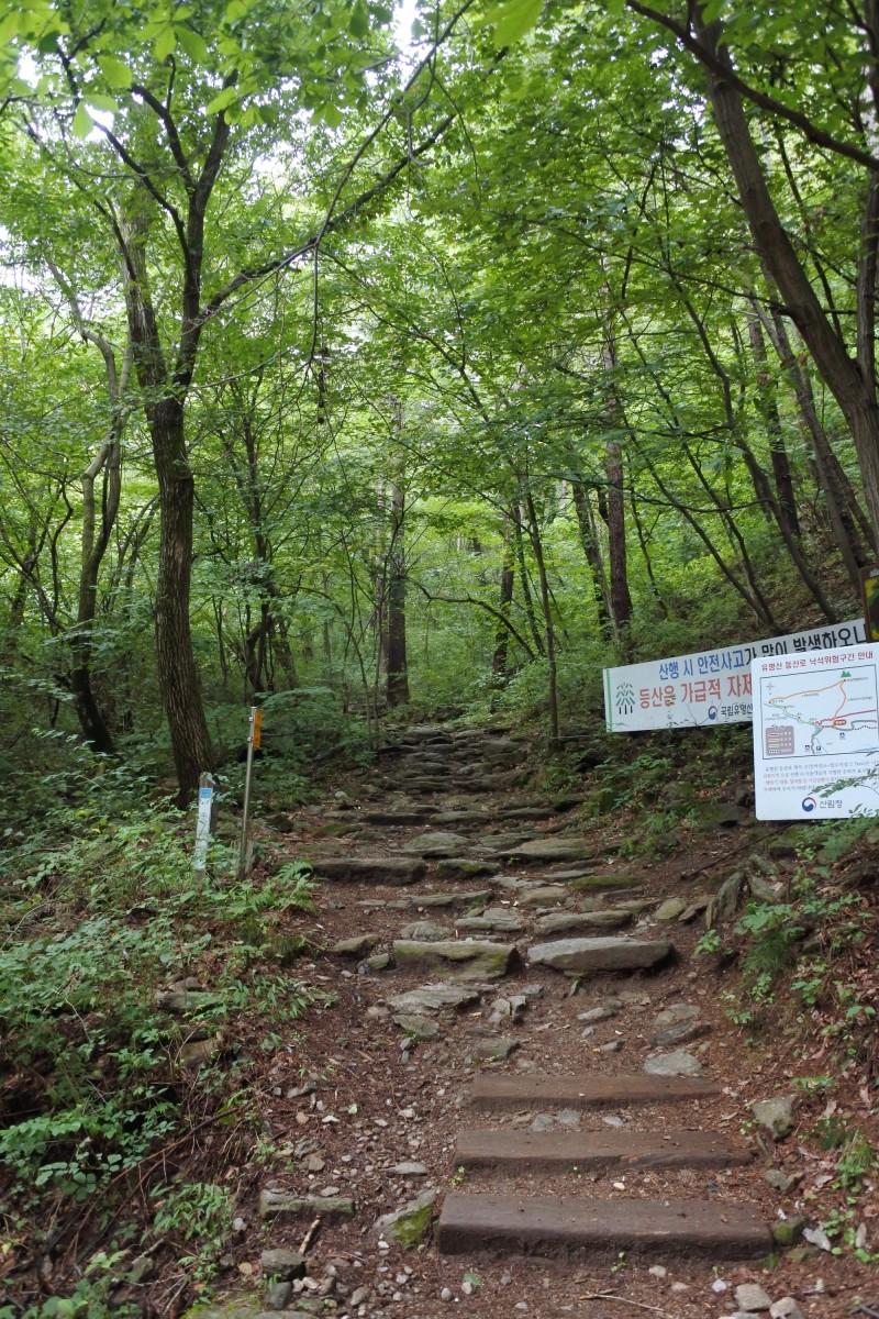 자연휴양림 등산코스 4