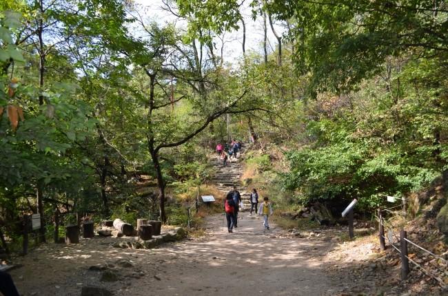산길을 걷는 가족의 모습