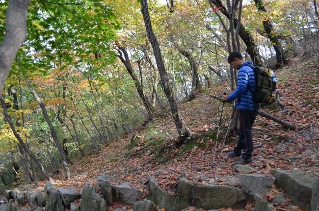 산악용 지팡이를 들고 산길을 걷는 모습