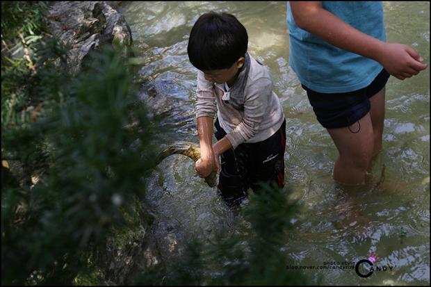 송어를 잡은 작은 아이의 모습
