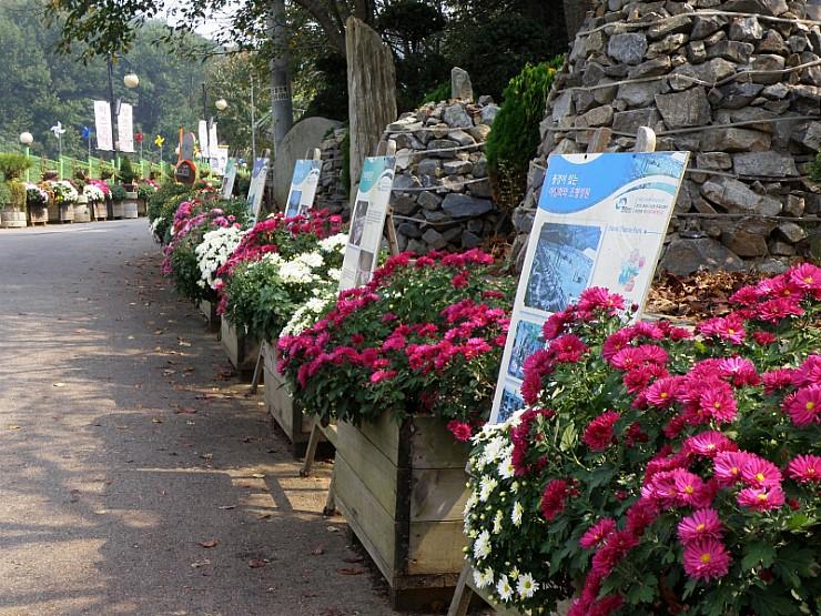 돌을 쌓아서 만든 기둥과 국화꽃들